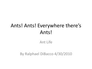 Ants! Ants! Everywhere there�s Ants!