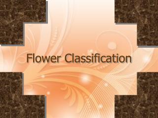 Flower Classification