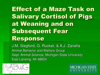 Effect of a Maze Task on Salivary Cortisol of Pigs at Weaning and on Subsequent Fear Response