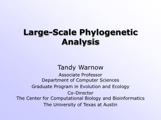 Large-Scale Phylogenetic Analysis