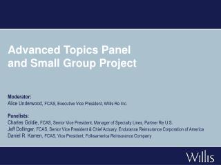 Advanced Topics Panel  and Small Group Project