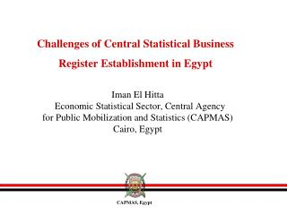 Challenges of Central Statistical Business Register Establishment in Egypt