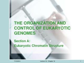 THE ORGANIZATION AND CONTROL OF EUKARYOTIC GENOMES