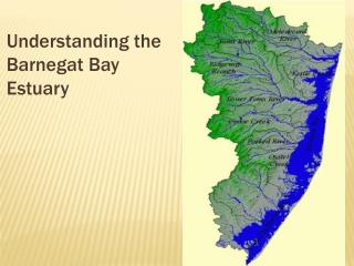 Understanding the Barnegat Bay Estuary