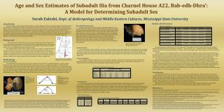 Age and Sex Estimates of Subadult Ilia from Charnel House A22, Bab-edh-Dhra':  A Model for Determining Subadult Sex