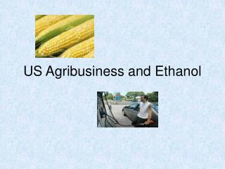 US Agribusiness and Ethanol
