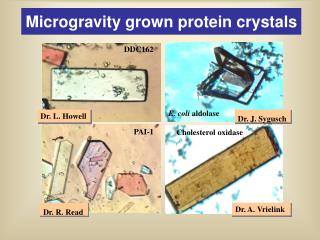 Microgravity grown protein crystals