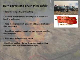 Burn Leaves and Brush Piles Safely