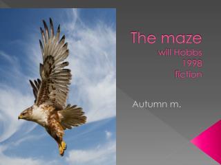 The maze  will Hobbs 1998 fiction