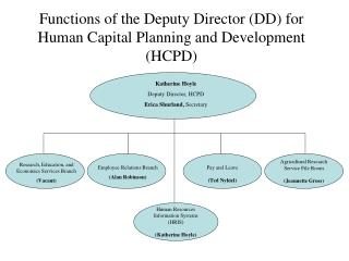 Functions of the Deputy Director (DD) for Human Capital Planning and Development (HCPD)