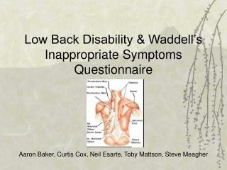 Low Back Disability & Waddell's Inappropriate Symptoms Questionnaire