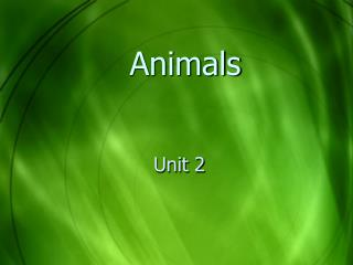 Unit 2 Kinds of Animals