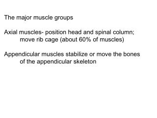 The major muscle groups Axial muscles- position head and spinal column; 	move rib cage (about 60% of muscles) Appendicu