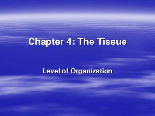 Chapter 4: The Tissue