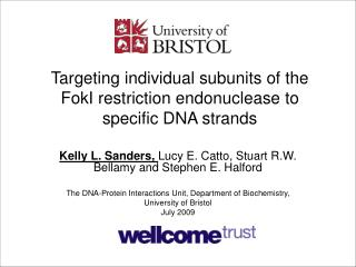 Targeting individual subunits of the FokI restriction endonuclease to specific DNA strands