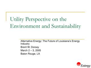 Utility Perspective on the Environment and Sustainability