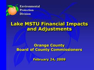 Lake MSTU Financial Impacts and Adjustments