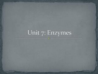 Unit 7: Enzymes