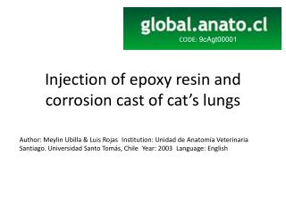 Injection of epoxy resin and corrosion cast of cat's lungs