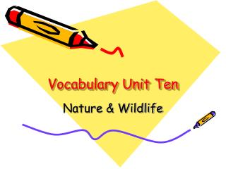 Vocabulary Unit Ten