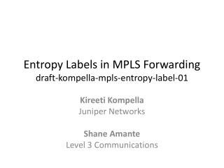 Entropy Labels in MPLS Forwarding draft-kompella-mpls-entropy-label-01