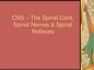 CNS � The Spinal Cord, Spinal Nerves & Spinal Reflexes
