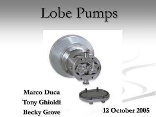 Lobe Pumps