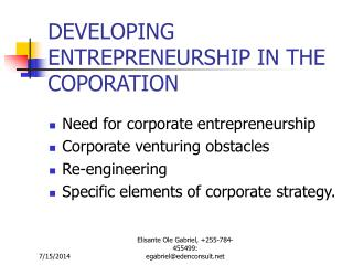 DEVELOPING ENTREPRENEURSHIP IN THE COPORATION