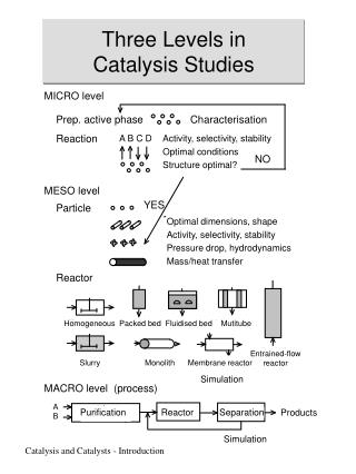 Three Levels in  Catalysis Studies