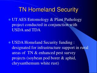 TN Homeland Security