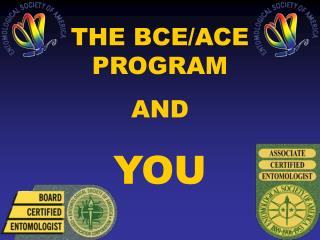 THE BCE/ACE PROGRAM  AND  YOU