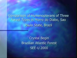 Comparison of Hymenopterans of Three Forest Types in Morro do Diabo, Sao Paulo State, Brazil