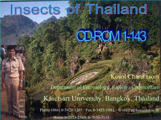 Kosol Charernsom Department of Entomology, Faculty of Agriculture Kasetsart University, Bangkok, Thailand