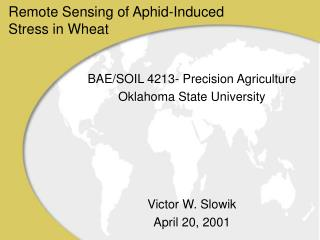 Remote Sensing of Aphid-Induced Stress in Wheat