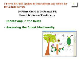 Identifying in the fields  Assessing the forest biodiversity
