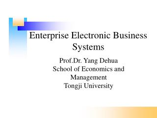 Enterprise Electronic Business Systems