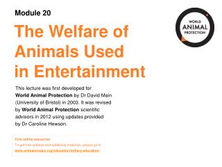 The Welfare of  Animals Used  in Entertainment
