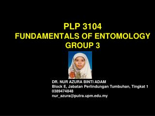 PLP 3104 FUNDAMENTALS OF ENTOMOLOGY GROUP 3
