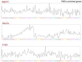 FMCx-enriched genes