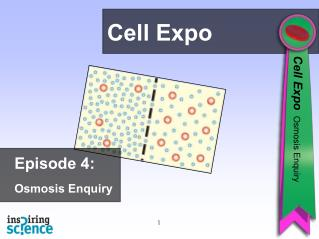Episode 4: Osmosis Enquiry