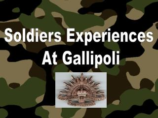 Soldiers Experiences  At Gallipoli
