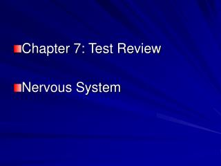 Chapter 7: Test Review Nervous System
