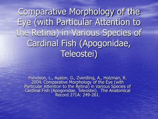 Comparative Morphology of the Eye with Particular Attention to the Retina in Various Species of Cardinal Fish Apogonidae