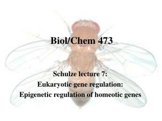 Biol/Chem 473