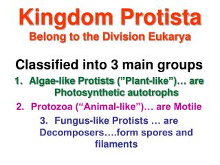 Kingdom Protista Belong to the Division Eukarya