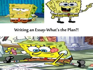 Writing an Essay-What's the Plan?!