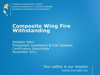 Composite Wing Fire Withstanding
