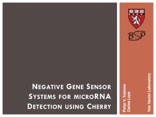 Negative Gene Sensor Systems for microRNA Detection using Cherry