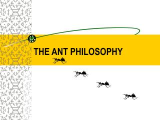 THE ANT PHILOSOPHY