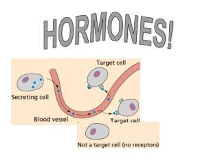 HORMONES!
